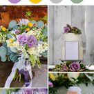 Ranunculus Tecolote White 10 Bulbs | Etsy