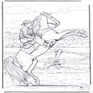 Wild horse - Horses