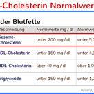 Cholesterin: lebenswichtig! Wann und warum gefährlich?
