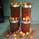 Canned Cherries