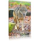 Wolf in a Leafy Forest Photographic Art Print on Canvas East Urban Home Size: 120cm H x 80cm W