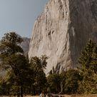 Stunning Yosemite Valley and Tuolumne Meadows Elopement  — Tida Svy