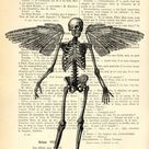 Gothic antique angel skeleton art on upcycled books, human skeleton wings wall art book page print, gothic bedroom decor