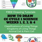 CC Cycle 1 Science Weeks 1 4   Drawing Tutorials