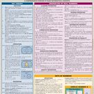 QuickStudy   Algebraic Equations Laminated Study Guide