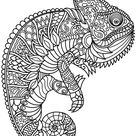 Chameleon Zentangle coloring page | Free Printable Coloring Pages