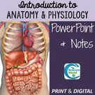 Introduction to Anatomy & Physiology PowerPoint (Distance Learning)