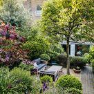 Landscape designer Emily Erlam's elegantly structured London garden