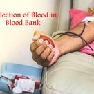 Collection of Blood in Blood Bank
