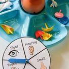 Themes For Preschool