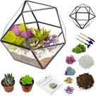 "7""x6"" Geo Glass Succulent Terrarium - Blue/Mint / Rainbow Fluorite"