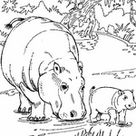 Kids-n-Fun | 18 coloring pages of Hippos
