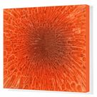 Box Canvas Print. Microscopic view inside of the artery with