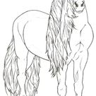 Friesian Horse by ReQuay on DeviantArt