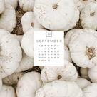 September Desktop & Mobile Wallpaper - sonrisastudio.com
