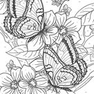 Awesome butterfly Coloring Pages for Adults - Thevillageanthology.com