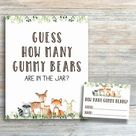 Pacifier Hunt Sign, Woodland Baby Shower Games Printable, Find The Pacifier, Rustic Baby Shower Game, Pacifier Hunt Gender Neutral byh588