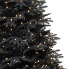 Black Christmas Trees