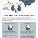 How Anger Affects the Brain and Body [Infographic] by drldf