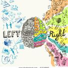 Brain Left Analytical Right Creative Hemispheres Stock Vector Royalty Free 217116007