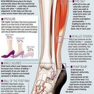 #Muscles #Anatomy & #Physiology #Health #Fitness #Training #Muscle #Leg