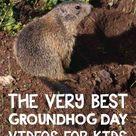The Groundhog Day