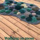 Walking on moss