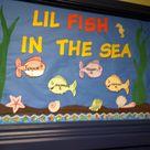 Fish Bulletin Boards