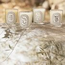 """@diptyque on Instagram: """"Illuminate your summer... #diptyque #summerscents #candles - Photography: @paul_rousteau"""""""