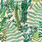 Natural Ferns Wallpaper - Sample