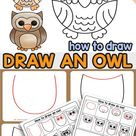 How to Draw an Owl   Step by Step Instructions