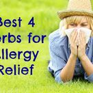 Best Herbs for Allergies (+ how to use them) | Healthy Home Economist
