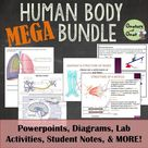Human Anatomy and Physiology Curriculum - Compatible with Distance Learning