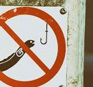 No Fishing Allowed 낚시 금지