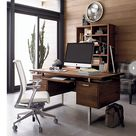 Masculine Home Offices