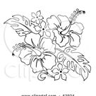 Royalty-Free (RF) Clipart Illustration of a Black And White Hibiscus Flower Bouquet by LoopyLand #62924