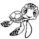 Leuk voor kids | baby schildpadje