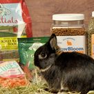 Rabbit Cages - Rabbit Cage - KW Cages - Everything for Rabbits