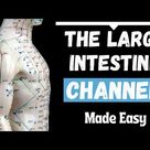 All About the TCM Large Intestine   AcuPro Academy   Acupuncture Online Courses