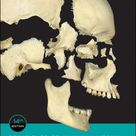 Principles of Human Anatomy, 14th Edition by Gerard J. Tortora