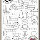 Body Parts Worksheet   Arbeitsblätter Englisch Unterricht
