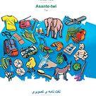 BABADADA, Persian Farsi (in arabic script) - Asante-twi, visual dictionary (in arabic script) - dihyinari a yεhwε: Persian Farsi (in arabic script)