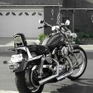 Harley Davidson Bikes