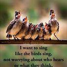 Sing In