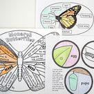 Learning about Monarch Butterflies by Reading, Writing, and Crafting