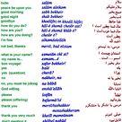 Farsi, the most widely spoken Persian Language, a Farsi Dictionary, Farsi English Dictionary, The spoken language in Iran, History of Farsi Language, Learn Farsi, Farsi Translation