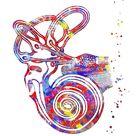 'Ear anatomy, Inner ear, Cochlea Histology, Vestibular System Structure, Audiology' by Rosaliartbook