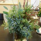 Winter Wreaths and Arrangements   FineGardening