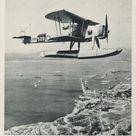Large Framed Photo. British Fairey Swordfish floatplane (b/w