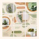 Indoors Plants Instagram Puzzle Feed